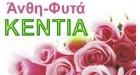 KENTIA